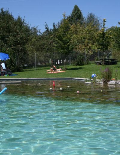 öffentliches Naturbad Bisikon (1)
