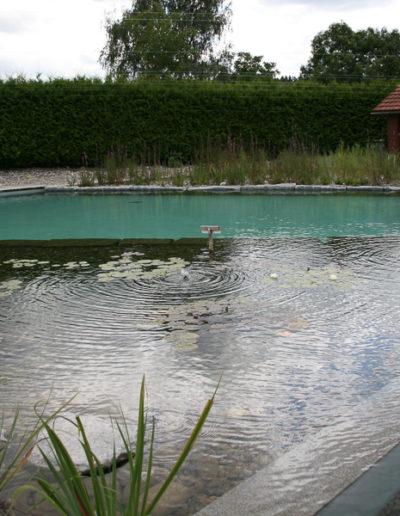 öffentliches Naturbad Bisikon (2)